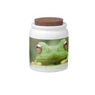 Frog Eyes Candy Jar