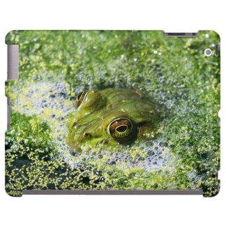 Frog Eyes in a Pond
