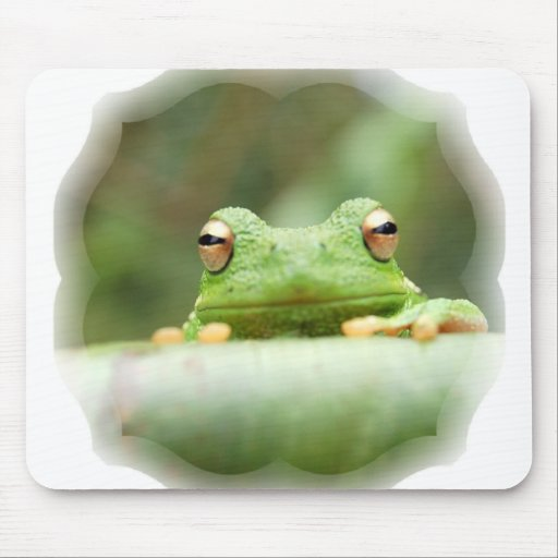 Frog Eyes Mouse Pad