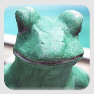 Frog Face Square Sticker