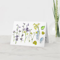 Frog Feathers Flowers Nature Happy Birthday Card