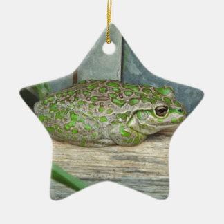 frog fence ceramic ornament