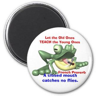 Frog & Fly Magnet
