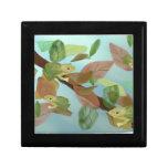 Frog Habitat Gift Box
