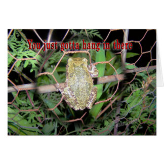 Frog-hang in there greeting card