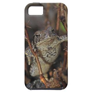 Frog Hanging Around iPhone SE/5/5s Case