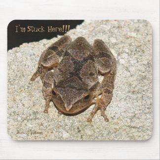 frog, I'm Stuck Here!!!, Photo by: TEYoung Mouse Pad