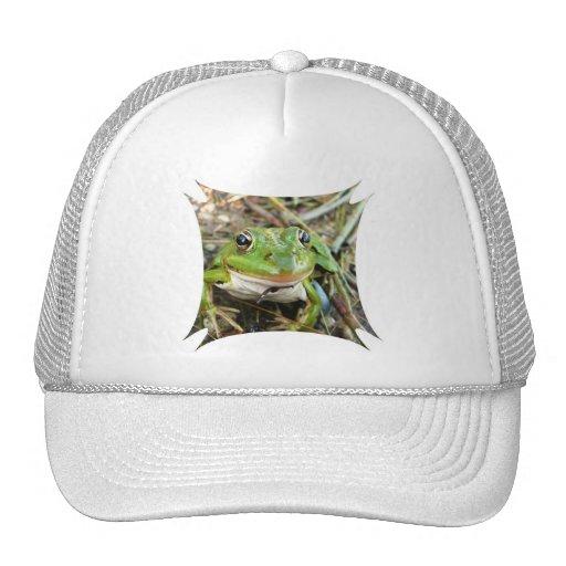 Frog Images Baseball Cap Mesh Hat