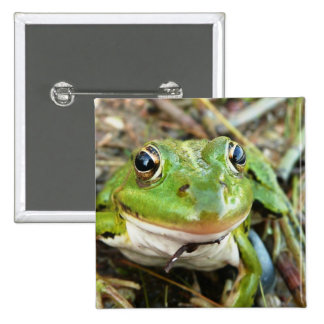 Frog Images Square Pin