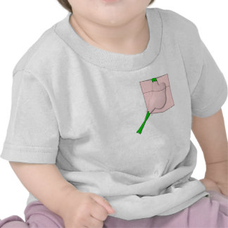 Frog In A Pink Pocket Tshirt