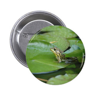 Frog in a Pond Pinback Button