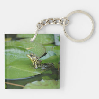 Frog in a Pond Acrylic Key Chains
