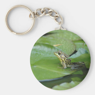 Frog in a Pond Keychains