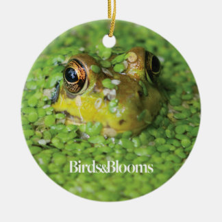 Frog in Green Algae Double-Sided Ceramic Round Christmas Ornament