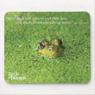 Frog in Green Algae Mouse Pad