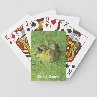 Frog in Green Algae Playing Cards