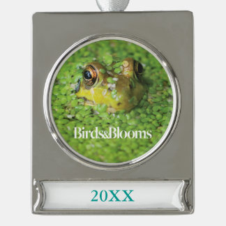 Frog in Green Algae Silver Plated Banner Ornament