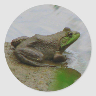 Frog in the Mud Sticker
