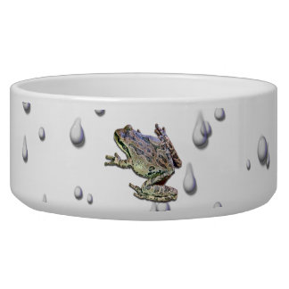 FROG IN THE RAIN PET WATER BOWLS