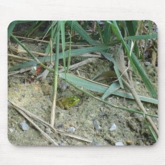 Frog in the Reeds Mouse Pad