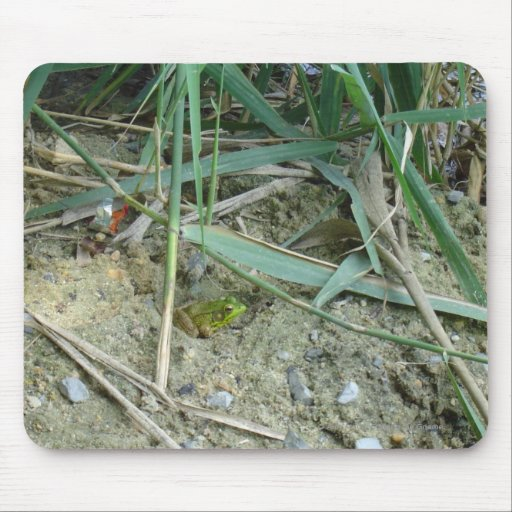 Frog in the Reeds Mousepad