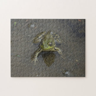 Frog in water puzzle