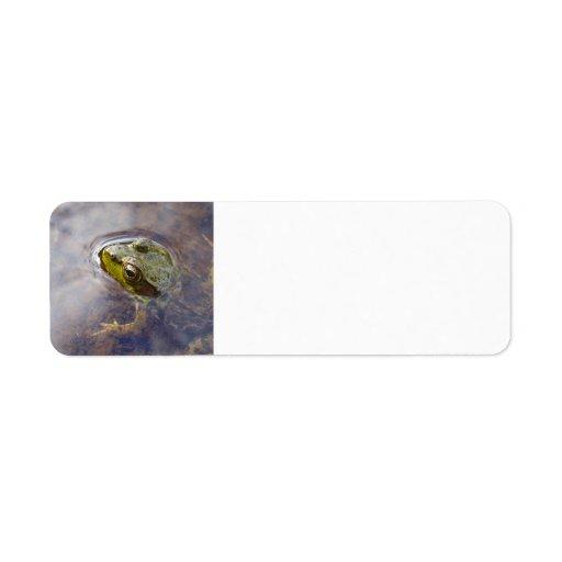 Frog in Water Return Address Label