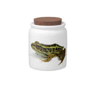Frog Jar Candy Dishes