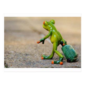 Frog journey postcard