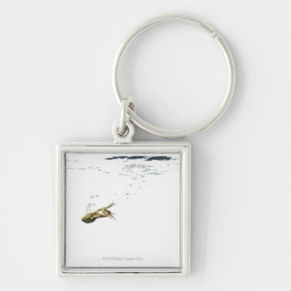 frog jumping and diving into the water keychains
