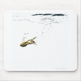 frog jumping and diving into the water mousepads
