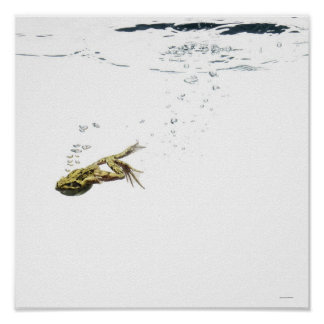 frog jumping and diving into the water print
