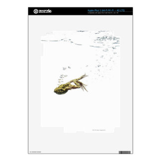 frog jumping and diving into the water skin for iPad 3