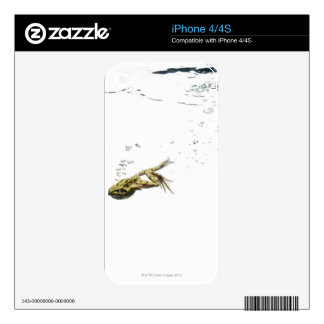 frog jumping and diving into the water skins for iPhone 4