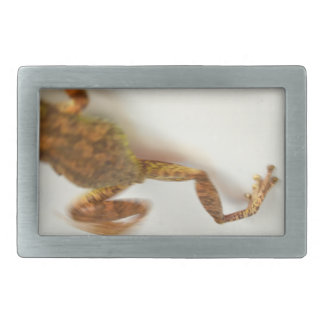 frog jumping towards left side animal amphibian belt buckle