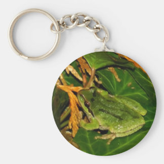 Frog Keychains