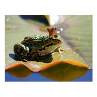 Frog king postcard