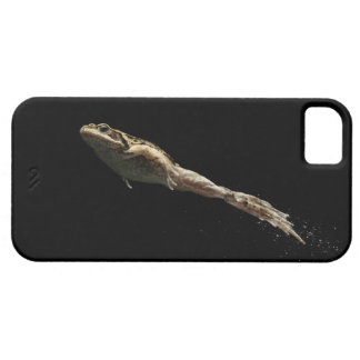 frog leaping off fresh green grass iPhone SE/5/5s case
