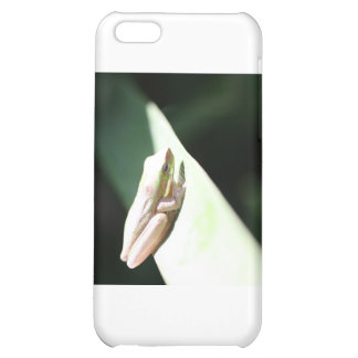 Frog Life iPhone 5C Case