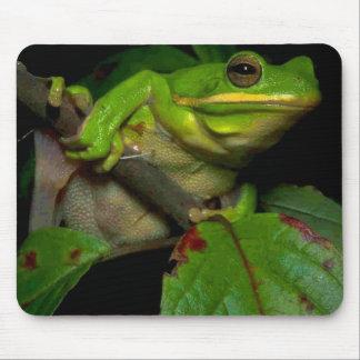 Frog lovers mousepad