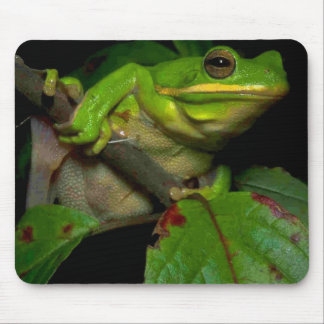 Frog lovers mousepad