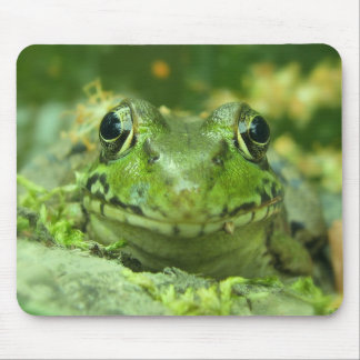 Frog Lover's Mousepad