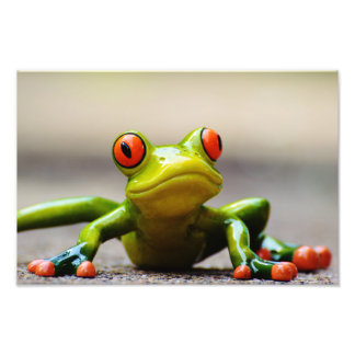 Frog macro photo print