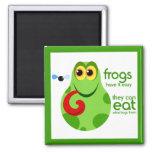 Frog Magnet