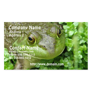 Frog Marsh Business Card