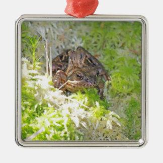 Frog Metal Ornament