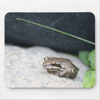Frog! Mouse Pad