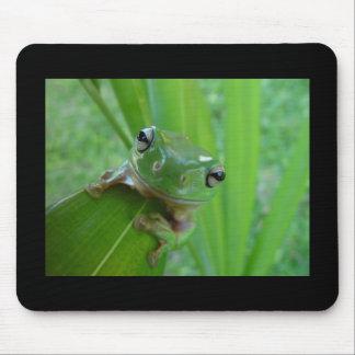 Frog! Mousepad