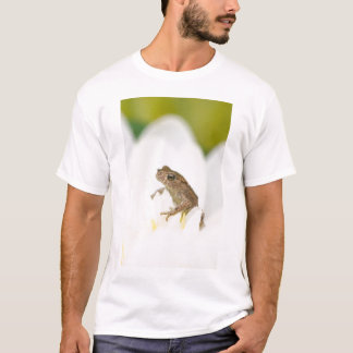 Frog on a Flower Adult White Tee Shirt