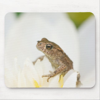 Frog on a Flower Mouse Mat Mouse Pad